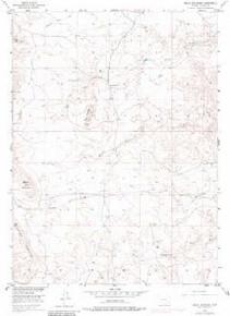 7.5' Topo Map of the Baldy Mountain, WY Quadrangle