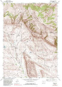 7.5' Topo Map of the Bargee, WY Quadrangle