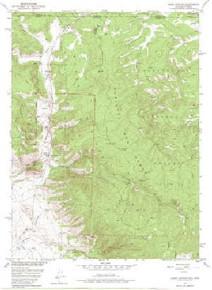 7.5' Topo Map of the Kings Canyon, CO Quadrangle