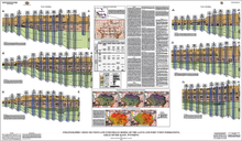 Stratigraphic Cross Sections and Subsurface Model of the Lance and Fort Union Formations, Great Divide Basin, Wyoming (2015)