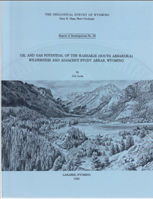 Oil and Gas Potential of the Washakie (South Absaroka) Wilderness and Adjacent Study Areas, Wyoming (1985)