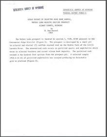 Assay Report of Selected Mine Dump Sample, Mother Lode Massive Sulfide Prospect, Albany County, Wyoming (1982)