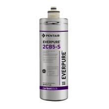 Pentair Everpure 2CB5-S Cartridge (EV961722)