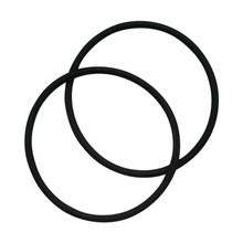 O-Ring For ACV Type Housing