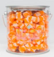 Orange Cream Gummi Bearsicles Paint Can