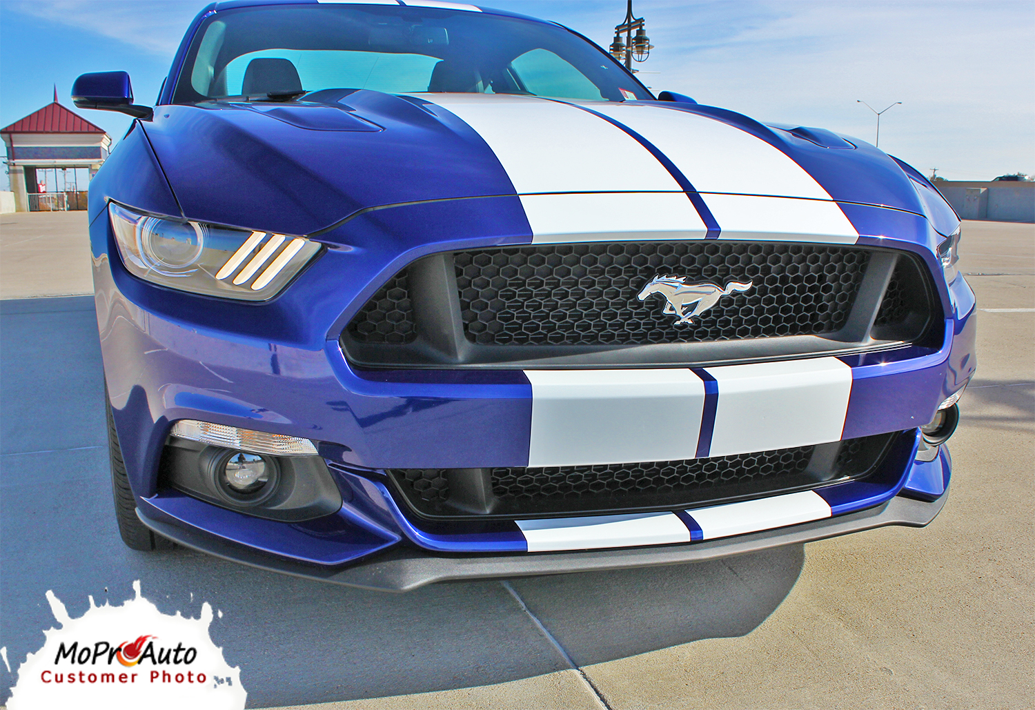 STALLION: Ford Mustang 2015+ MoProAuto Pro Design Series Vinyl Graphics and Decals Kit