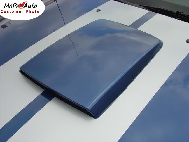Mustang WILDSTANG S-500 : Lemans GT500 Style Vinyl Racing Stripe Kit for 2005 2006 2007 2008 2009 Ford Mustang GT