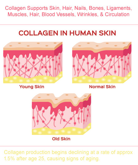 NeoCell Collagen for wrinkles, tendons, bones, hair, nails, skin, joints, muscles, ligaments and circulation
