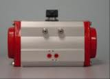 Bray Controls Actuator # 92-0930-11300-532