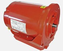 Armstrong Fluid Technology 816141-001 115V 1/4 HP Motor
