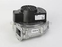 Bradford White 265-51310-00 Inducer Blower Motor W/Gasket