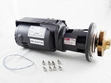"Raypak 004845F 1/2HP Taco Hdr Pump w/4.7"" Impeller"