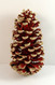 Red Painted Long Leaf Pine with Gold Glitter Tip