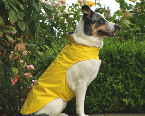 Best Selling Breathable Waterproof Dog Coat