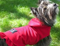 Dog Sweater with Hood