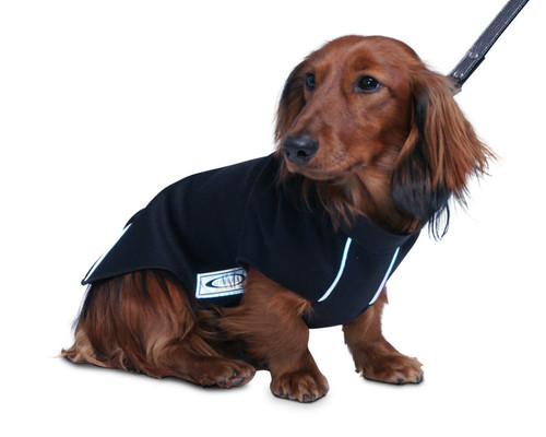 Best Waterproof Softshell Dog Coat