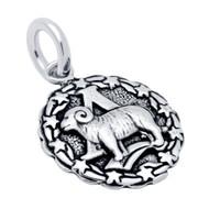 Sterling Silver Zodiac charm