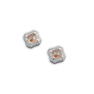 Champagne & Clear Cubic Zirconia Fashion Earrings Sterling Silver 10MM