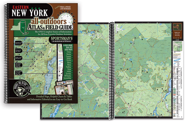 New York Atlases