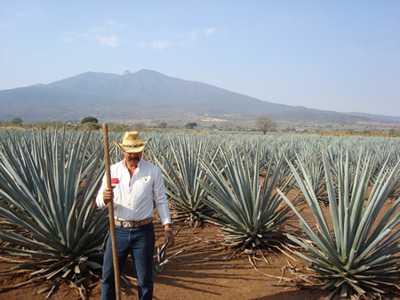 Blue agave farmer in Tequila, Mexico. Photo by Vintage Tradition
