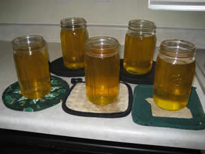 To set tallow aside, pour it into jars...