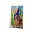 Saint Lazarus Laminated Prayer Card