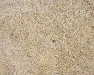 Daltile Granite 12 x 24 New Venetian Gold Polished G215512241L