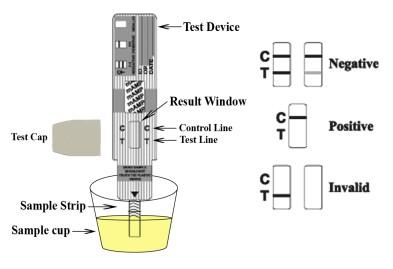 single-drug-test-procedure.jpg