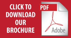 download-brochure-icon-300x160.jpg