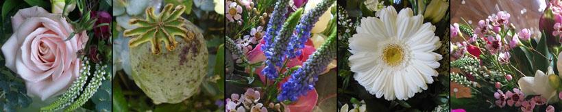 flowershop-banner.jpg