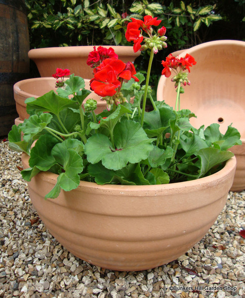 Pots and Planters - Yorkshire Frost-proof Pots - Bunkers Hill Plant Planters Yorkshire on