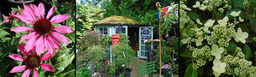 Bunkers Hill tea room
