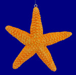 "Starfish Ornament, 4"", break resistant #SL5748"