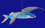 "Flying Fish Ornament, 5 3/4 x  6 1/2"", break resistant #SL5774"
