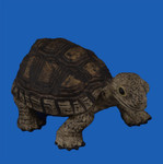 Break Resistant Tortoise Figurine