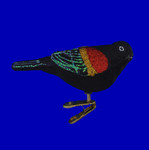 Red-Winged Blackbird Glass Ornament by Old World Christmas 12672