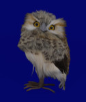Small Speckled Furry Hoot Owl Figurine