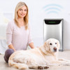 Dreval D950 air purifier