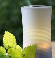Ultrasonic Humidifier and Aroma Diffuser H-TT101A