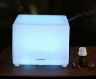 Ultrasonic Humidifier and Aroma Diffuser H-TT202