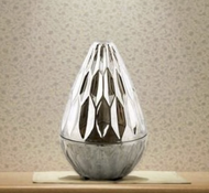 Aroma Diffuser and Ultrasonic Humidifier H-20015