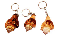 """Lina"" Clam Key Tags, Elephant Decorated - Set of 10"