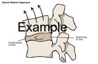 Ergonomics Clipart Image Gallery Reach Envelopes Example