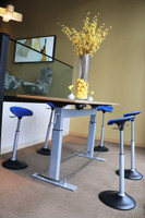 Mobis Seat (FFS-1000) In Use