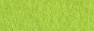 Caterpillar Green Felt Square - Wool Blend Felt
