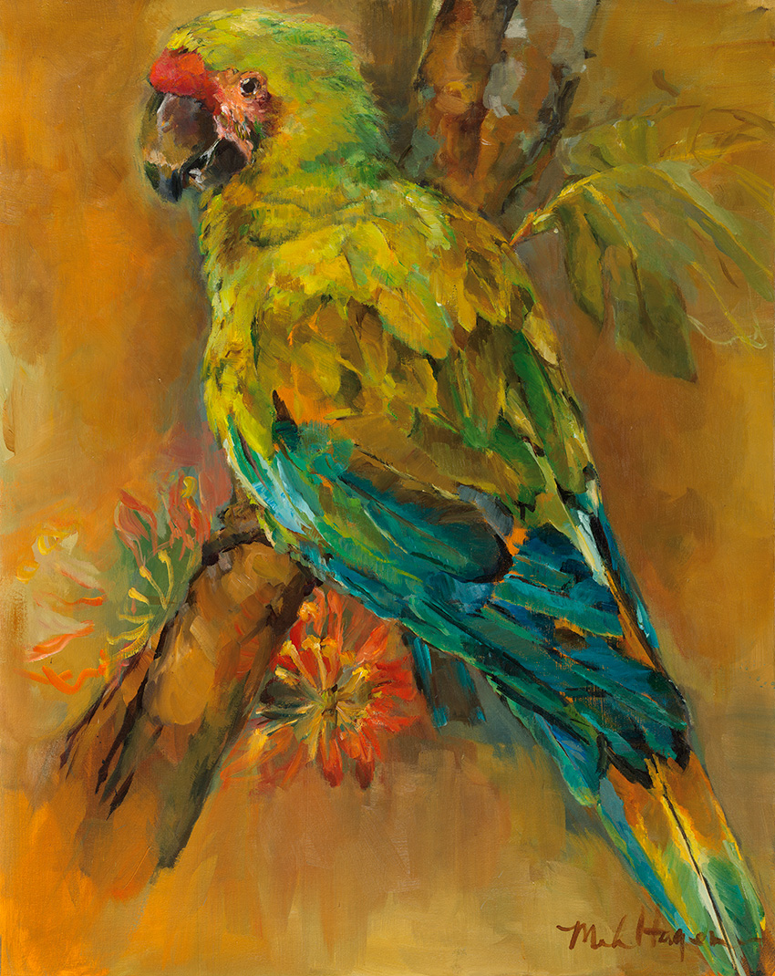 tropical-bird-ksid13250-by-marilyn-hageman.jpg