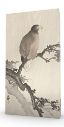 Eagle on Branch Stretched Canvas