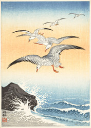Five Seagulls Above Raging Sea