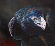 Wildlife Art - Back Off by Hazel Howie
