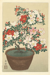 Flowering Azaleas in Brown Pot by Ohara Koson